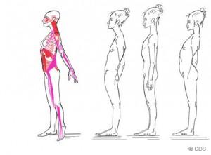 http://abante.eus/wp-content/uploads/2012/06/cadenas-musculares-unmsm-tavo-300x221.jpg